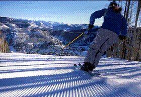 Skier src=http://www.wingert.de/_cms/images/stories/gruppenreisen/pic_skier.jpg