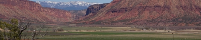 Colorado src=http://www.wingert.de/_cms/images/stories/individual/banner_colorado.jpg